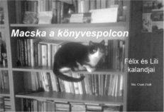 Macska a könyvespolcon-0