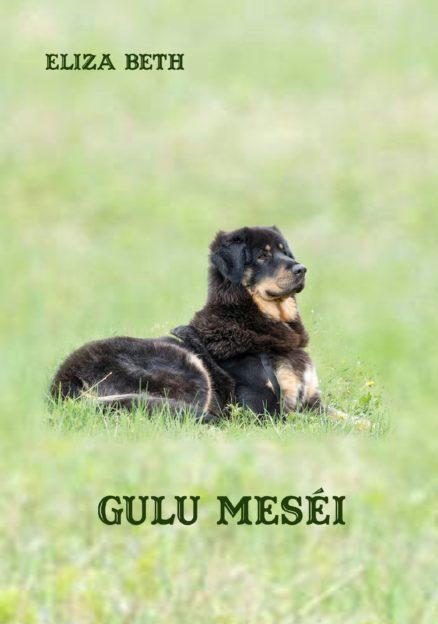 Gulu meséi-0